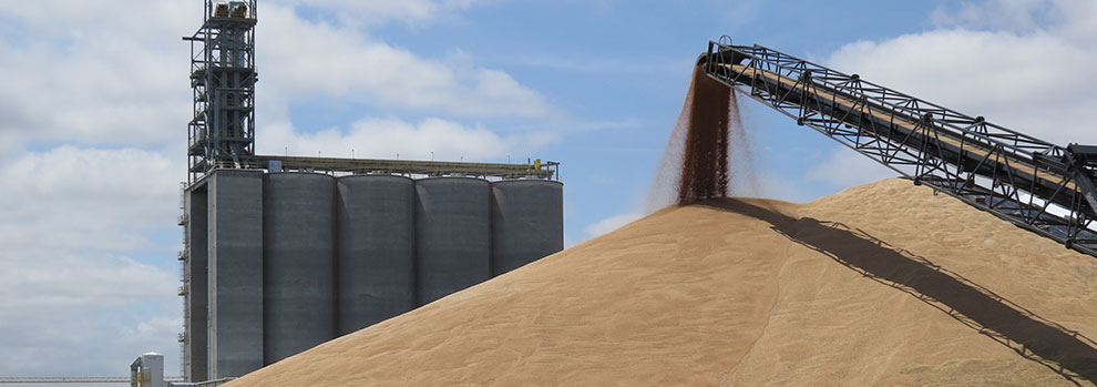 Levels of Automation in Grain Handling